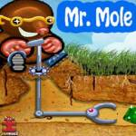 Mr Mole screenshot 1/4