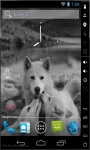 Wolf Family Live Wallpaper screenshot 2/2