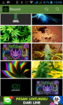 Marijuana Wallpaper HD screenshot 1/3