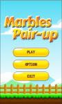 Marbles Pair-Up screenshot 1/6