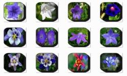 Bell Flowers Onet Classic Game screenshot 1/3