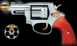 Revolver Gun Pro screenshot 2/2