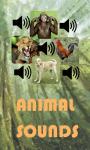 Animal Ringtone Sounds screenshot 1/3
