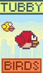 Tubby Birds screenshot 1/6