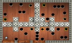 Wooden Labyrinth screenshot 2/5