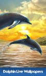 Best Dolphin Live Wallpapers screenshot 1/6