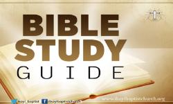 BibleStudyGuide screenshot 1/1