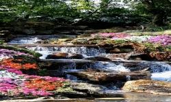 Forest River LWP screenshot 2/3