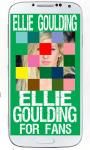 Ellie Goulding Puzzle screenshot 6/6