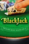 Blackjack - Spin3 V1.01 screenshot 1/1