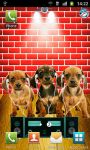 Dancing Dogs Live Wallpaper screenshot 3/4