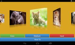 Kitten Cat Jigsaw Puzzle Game screenshot 1/6