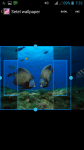 Fish HD Wallpaper For Android screenshot 3/4