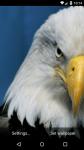Beautiful Eagle Live Wallpaper HD screenshot 2/6