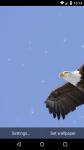 Beautiful Eagle Live Wallpaper HD screenshot 3/6