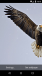 Beautiful Eagle Live Wallpaper HD screenshot 4/6