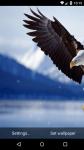 Beautiful Eagle Live Wallpaper HD screenshot 6/6