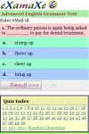 Advanced English Grammar Test screenshot 2/3