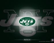 New York Jets Fan screenshot 2/3
