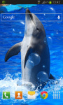 Animal Dolphin Live Wallpaper screenshot 2/2