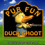 Pub Fun Duck Shoot screenshot 1/2