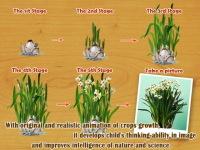 Baby Plants Flowers screenshot 1/4