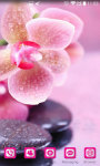 Orchid Flower Wallpaper HD screenshot 2/5