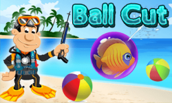 Ball Cut screenshot 1/1