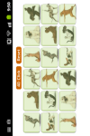 Dog Memory Game screenshot 2/2