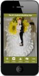 Wedding Checklist 2 screenshot 1/4
