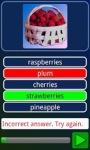 eTeacher - Learn English screenshot 2/6
