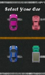 Rally Car Racing Deluxe screenshot 2/5