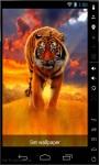 Amazing Tiger On Fire Live Wallpaper screenshot 2/2