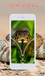 Snake Zipper Lock Screen screenshot 6/6