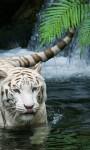 Animals Zoo screenshot 5/5