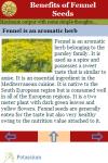 Benefits of Fennel Seeds screenshot 3/3