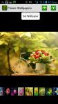 Beautiful Flower HD Wallpaper screenshot 1/4