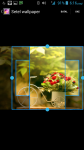 Beautiful Flower HD Wallpaper screenshot 3/4