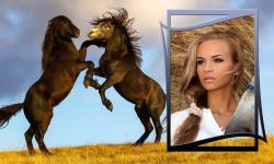 Horse Photo Frames Best screenshot 4/6