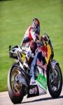 Redbull Motocross 3D game screenshot 1/6