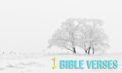 iBibleVerses screenshot 1/4