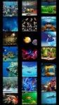 Aquarium Wallpapers by Nisavac Wallpapers screenshot 2/4