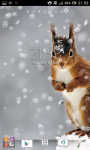 Christmas snow and squirrel screenshot 5/5