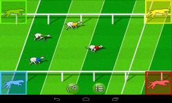 Dog Race Game screenshot 1/3