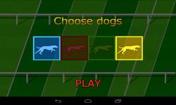 Dog Race Game screenshot 3/3