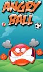 Crazy Angry Ball  screenshot 1/1