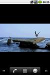 Cinemagraph 2 by yuriyts24 screenshot 2/4