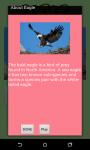 Animal Sounds Game for Kids screenshot 4/6