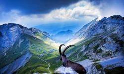 Switzerland HD Wallpaper screenshot 4/4
