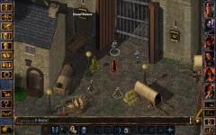 Baldurs Gate Enhanced Edition single screenshot 2/6